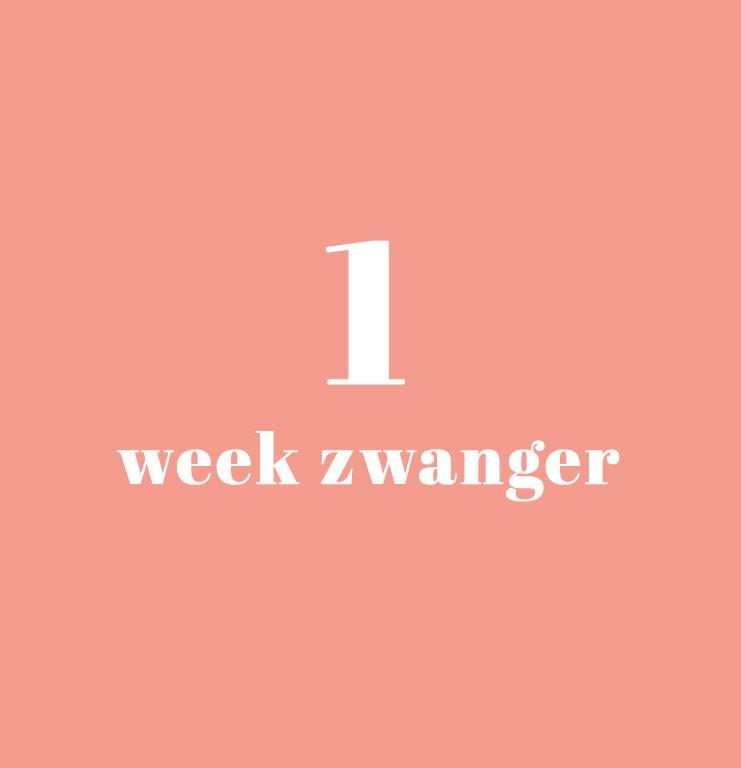 1 week zwanger - zwangerschapskalender - onder mama's