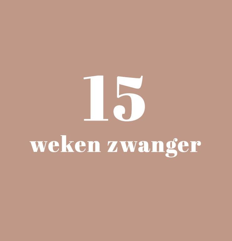 15 Weken Zwanger - Zwangerschapskalender