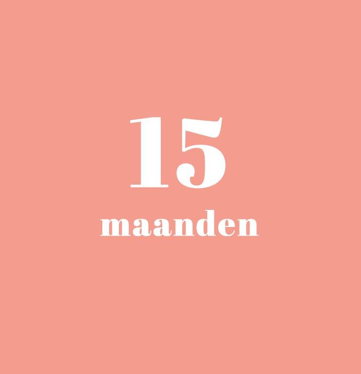 babykalender - 15 maanden