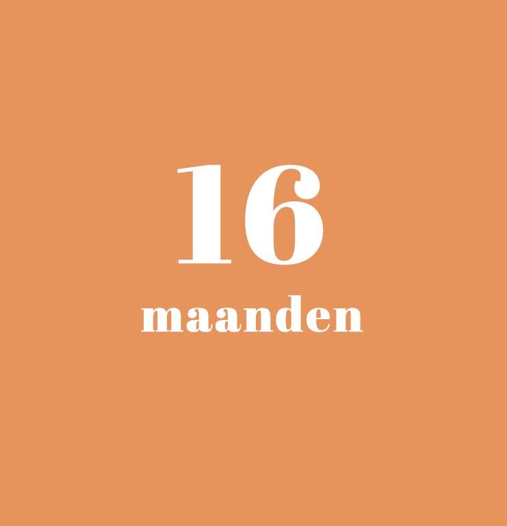 babykalender - 16 maanden