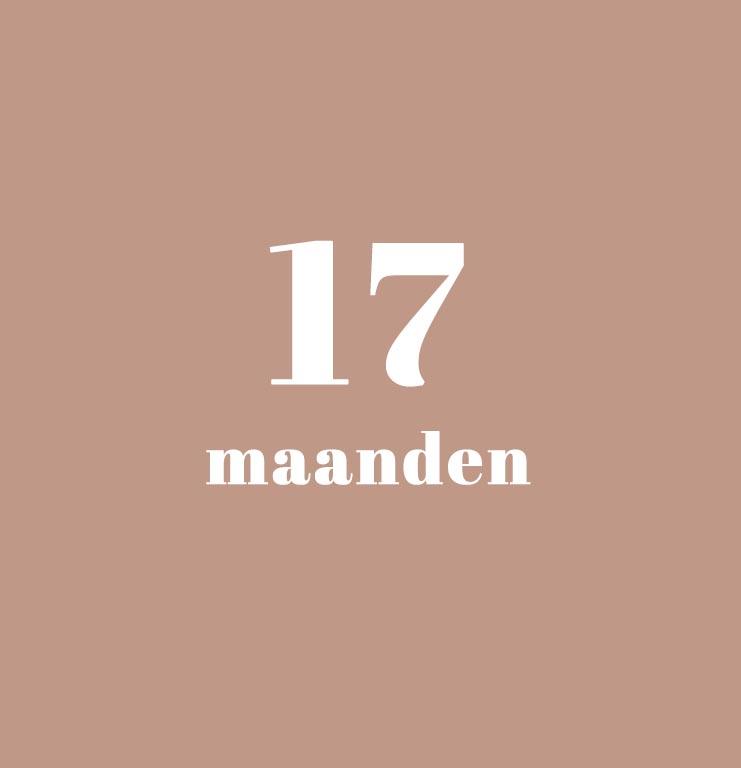 babykalender - 17 maanden