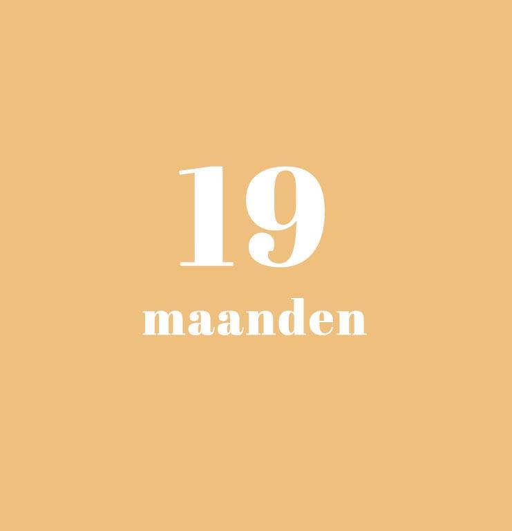 babykalender - 19 maanden