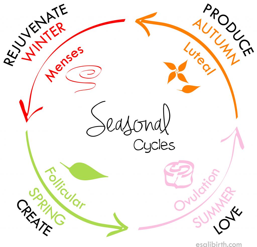 Rebecca Verhofstede - eten volgens je menstruatiecyclus